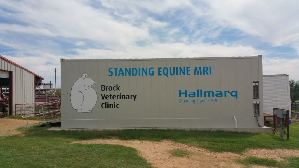 Brock Veterinary Clinic offers Standing MRI Services to Horse Owners