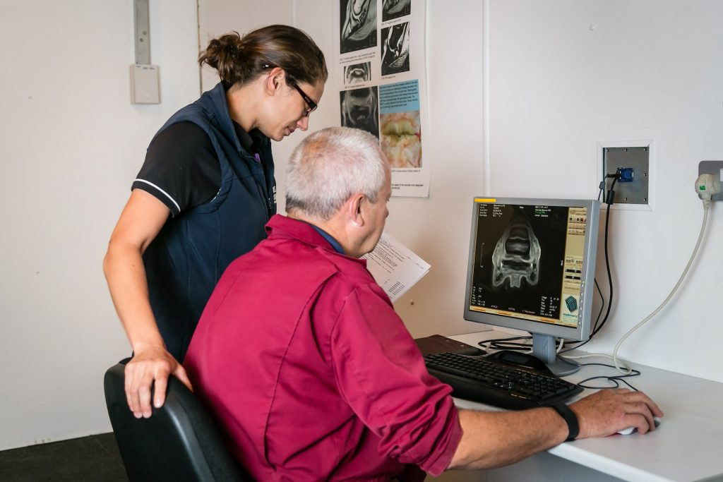 Vets reviewing an Equine MRI image