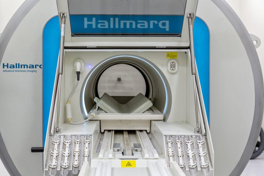 Small Animal MRI Machine