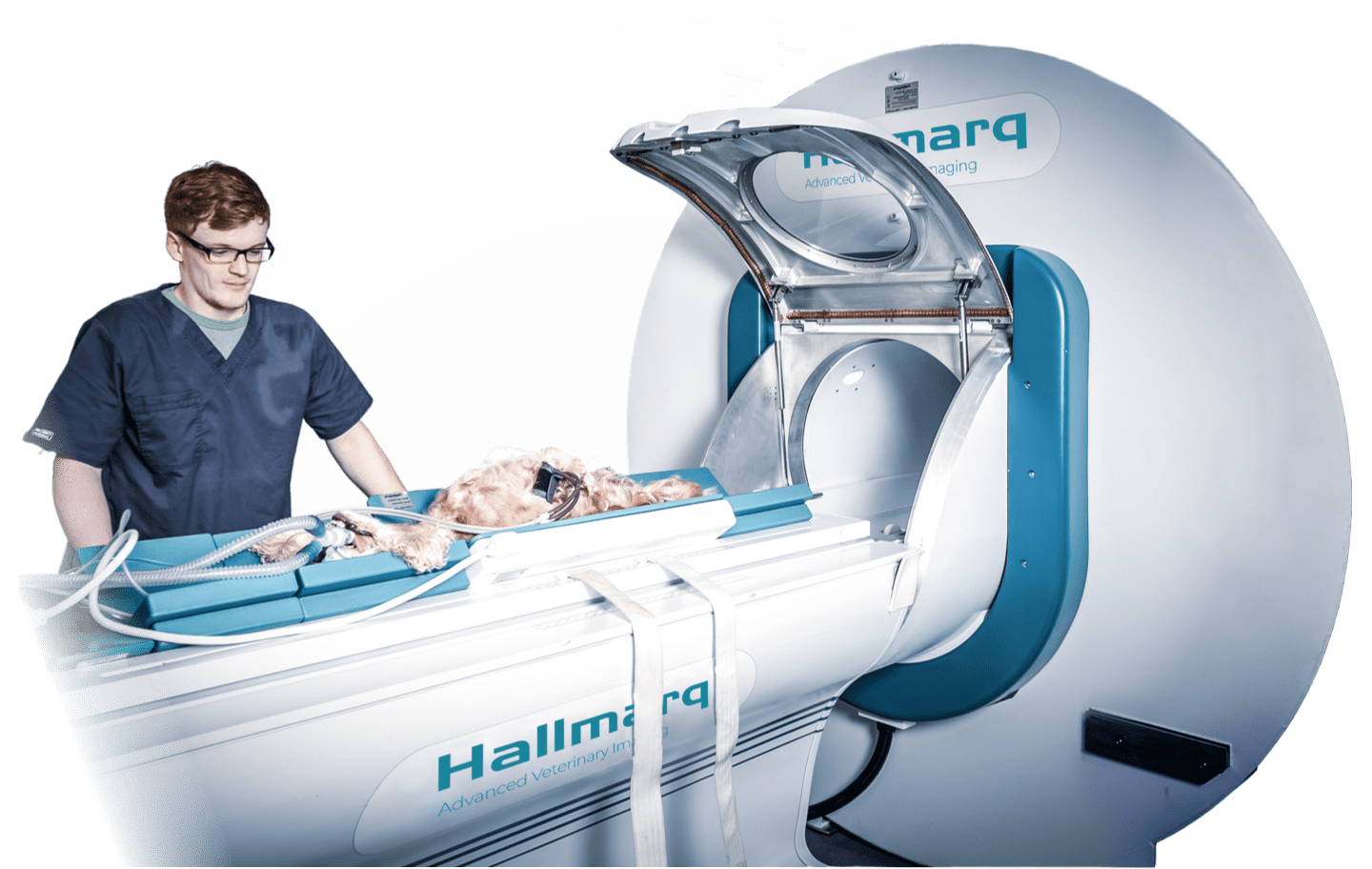 Picture of Hallmarq Veterinary imaging specialist's small animal MRI scanner.