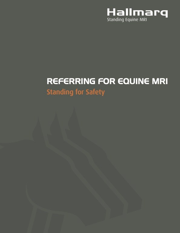 Equine Referring Vet Brochure 2020